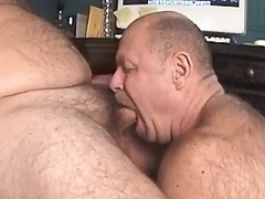 Daddy Blow Bearboy!