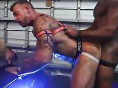 Pig Bareback Sex Orgy