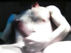 Jerking horse cock 1 on cam