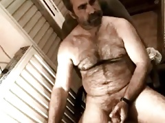 Amazing hairy bear stroking