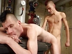 Punk homos dirty sex.