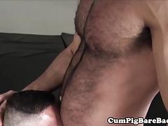 Tattooed bear barebacking tight mature ass