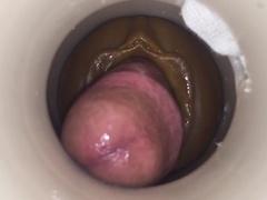 Daddy's cumming by cum cam man