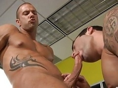 Ripped office mate drooling on slong