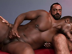 Bearded hunk gets his tool blown by a balck hunk