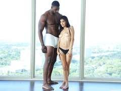 Black studs on white sluts, HD interracial movies