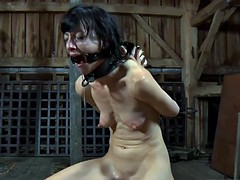 Harsh whipping for sweet beauty