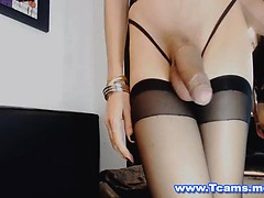 Masturbation, Transsexuelle, Solo, Webcam