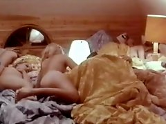 Group orgy in Swedish 70s commune