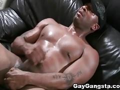 Gay Black Huge Cock Fucking White Ass
