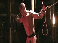 Bondage Montage whipping , bondage, gut punch, muscle.