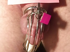 Ruined orgasm in chastity cage 2