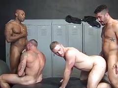 Gym breeding fourgy