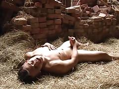 alone in the barn