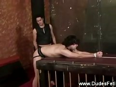 Dumb gay gets spanked by his master