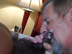 Daddy bear eats black bear cum